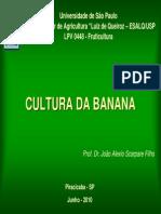 Aula banana_junho 2010.pdf