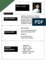 Curriculum Luis Yaraure