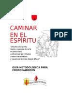 Guía Metodológica Act 06-2014