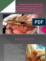 Prevencion de Peritonitis Experimental Por Cepas de Escherichia
