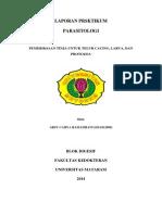 Laporan Praktikum PARASITOLOGI - Pemeriksaan Feses