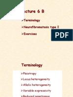 L6 B Terminology