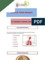 2. USMP CLASE DE FOSAS NASALES.pptx