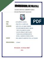 Primera Práctica Calificada Estadistica (Autoguardado) Terminado