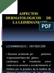 Leishmaniasis Expo