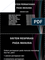 Slide Pernafasan