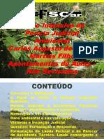 Aula 01 - Uma Visão Geral de PUma Visão Geral de Perícias Ambientaiserícias Ambientais