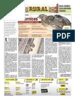 RURAL Revista de ACB Color - 8 diciembre 2010 - PARAGUAY - PORTALGUARANI