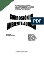 Corrosion en Ambiente Acuoso