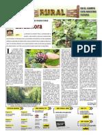 RURAL Revista de ACB Color - 17 noviembre 2010 - PARAGUAY - PORTALGUARANI