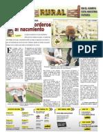 RURAL Revista de ACB Color - 6 octubre 2010 - PARAGUAY - PORTALGUARANI