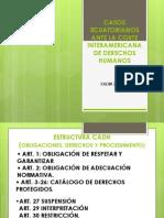 CASOS  ECUATORIANOS ANTE LA  CORTE  INTERAMERICANA DE  DERECHOS HUMANOS