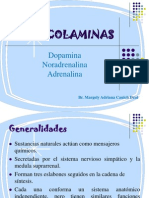 catecolaminas-120815191953-phpapp01