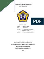 LAPORAN PRAKTIKUM BIOLOGI TENTANG METABOLISME.docx