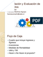 Formulación y Evaluación de Proyectos_Flujo de Caja
