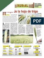 RURAL Revista de ACB Color - 12 mayo 2010 - PARAGUAY - PORTALGUARANI