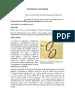18.Enterobius Vermicularis