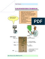 Bab. 1-VIII Struktur Dan Fungsi Tubuh Tumbuhan (Sisca)