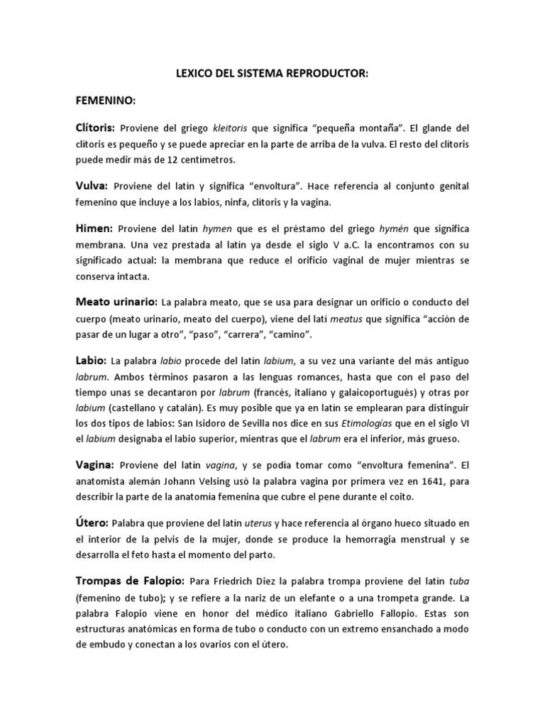 Lexico Del Sistema Reproductor