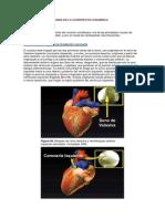 4. Electrocardiograma en La Cardiopatia Isquemica