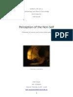 Perception of the Non-Self