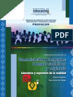 UF15 Lengua Castellana