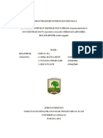 LAPORAN PRAKTIKUM FISIOLOGI SERANGGA.docx ^^