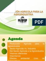 Producción Agricola Para La Agroindustria