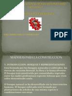 Maderas Para La Construccion
