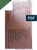 die making 2.pdf