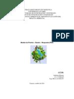 Modelo Presión - Estado y Respuesta