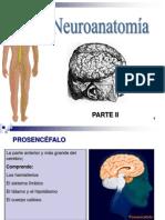 UNIDAD 7 - clase 2 - NERVIOSO - Cerebro.ppt
