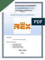 Rex Disagnostico Completado