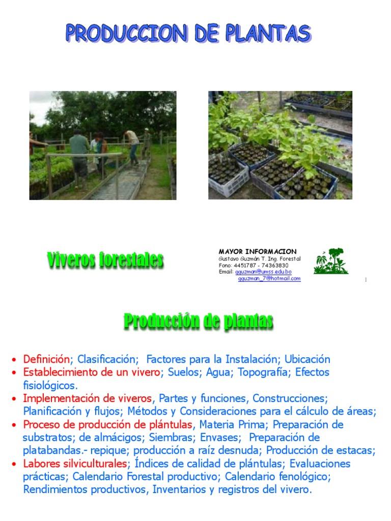 1 producci n de plantas for Definicion de vivero