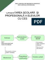 orientare_scolara