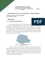 Rede Publicas de Cooperaçao Local