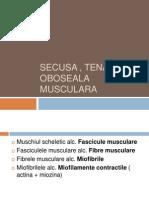 Prezentare secusa , tetanos , oboseala musculara
