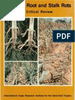 Sorghum Root and Stalk Rots