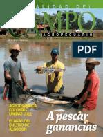 CAMPO - AÑO 11 - NUMERO 127 - ENERO 2012 - PARAGUAY - PORTALGUARANI