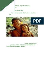Dicionário Tupi-Guarani / Português