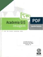 ArcGIS Desktop I - Iniciando com SIG versão 10.pdf