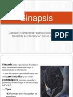 sinapsis2.ppt