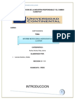 INFORME DE HIDROLOGIA.docx