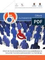 Ghid de Buna Practica Privind Accesibilitatea La Locul de Munca a Persoanelor Cu Handicap