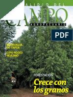 CAMPO - AÑO 11 - NUMERO 132 - JUNIO 2012 - PARAGUAY - PORTALGUARANI