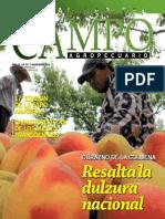 CAMPO - AÑO 12 - NUMERO 137 - NOVIEMBRE 2012 - PARAGUAY - PORTALGUARANI
