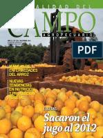 CAMPO - AÑO 12 - NUMERO 138 - DICIEMBRE 2012 - PARAGUAY - PORTALGUARANI