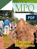 CAMPO - AÑO 12 - NUMERO 144 - JUNIO 2013 - PARAGUAY - PORTALGUARANI