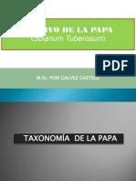 4. Taxonomia y Morfologia de la papa