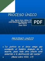 PROCESO +ÜNICO.ppt